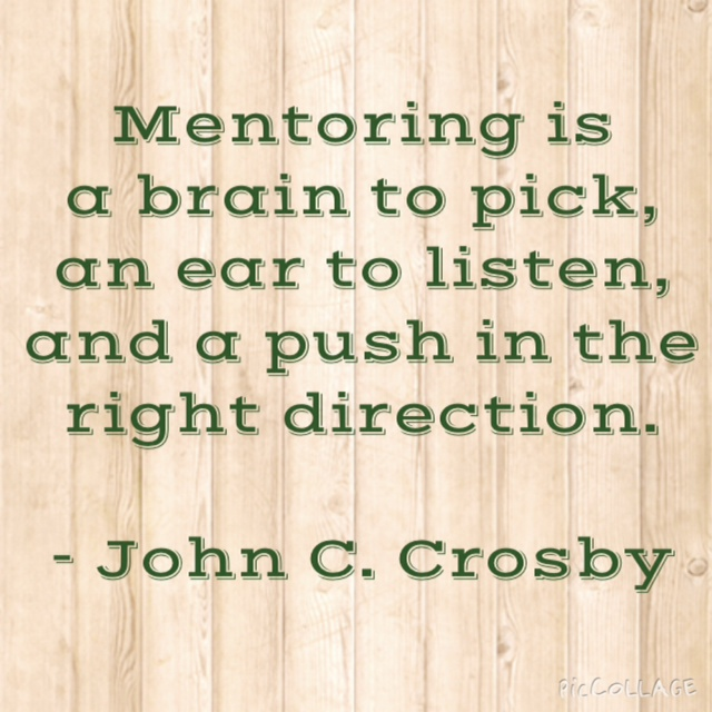 mentoring is